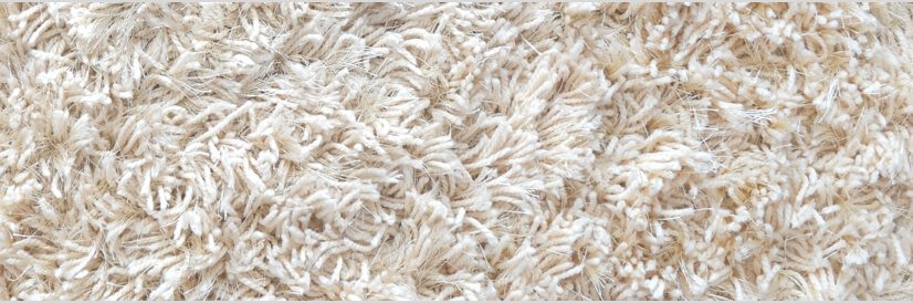 Carpet Cleaning Cleaning Services Quality Carpet